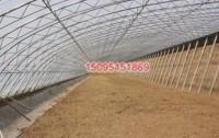 无立柱全钢管温室大棚