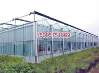 智能式温室大棚