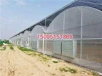 玻璃板智能温室大棚
