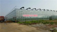 KY-04玻璃智能温室