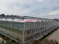 KY-09玻璃智能温室