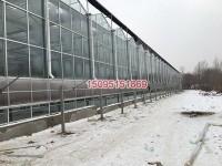 玻璃板智能温室骨架供应